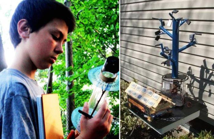 而是由钢铁做成一个树状结构,随后将太阳能电池板放置在这棵「树」的
