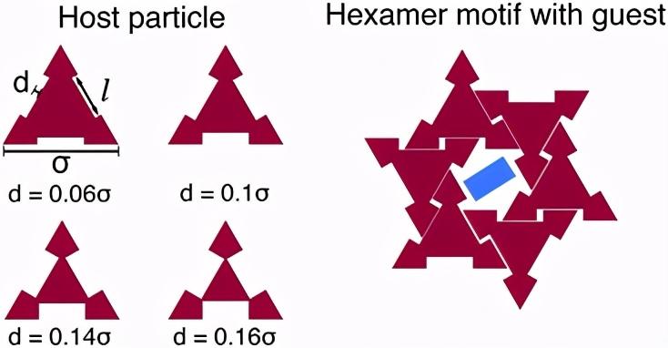 《软物质》形状驱动熵自组装体,可重新配置二进制主客体胶体晶体