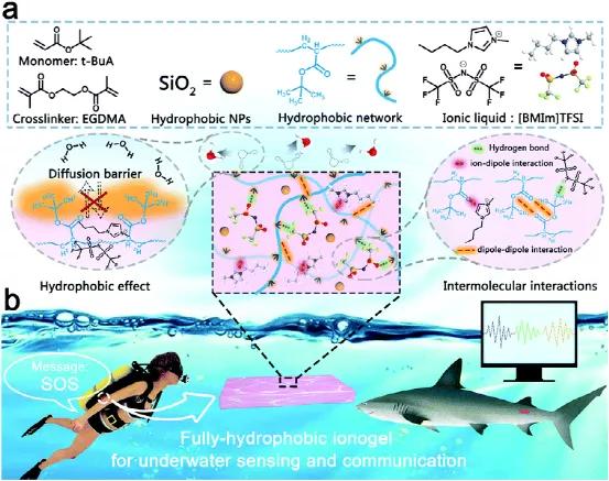 完全疏水的离子凝胶可实现高效的可穿戴水下传感器和通信器