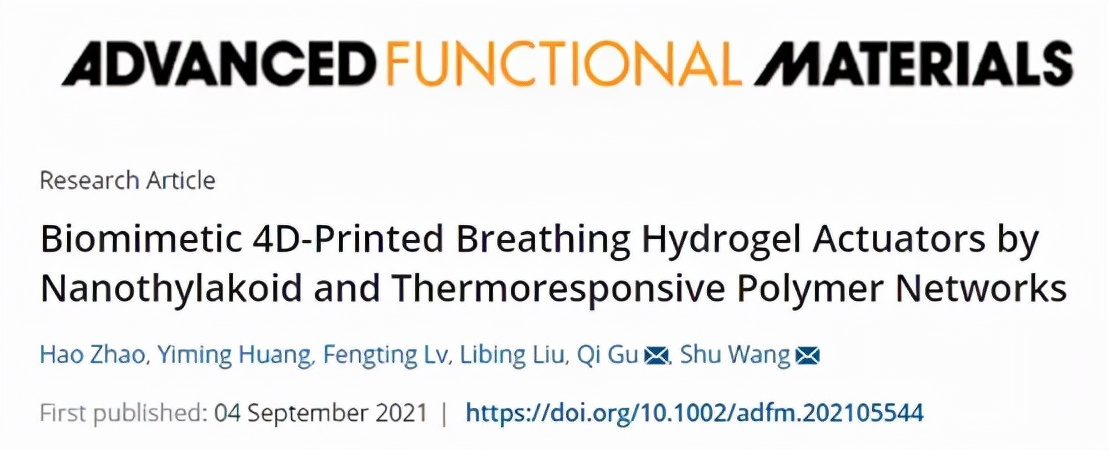 纳米类囊体和热响应聚合物网络的仿生4D打印呼吸水凝胶致动器